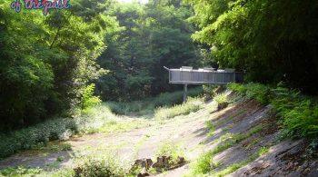 Opel-Rennbahn - Old Opel Test Track